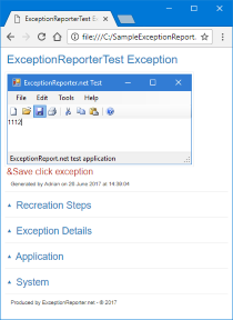 Exception Reporter .Net Sample Report
